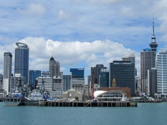 Vacation in Wellington Leads to Job in New Zealand 1